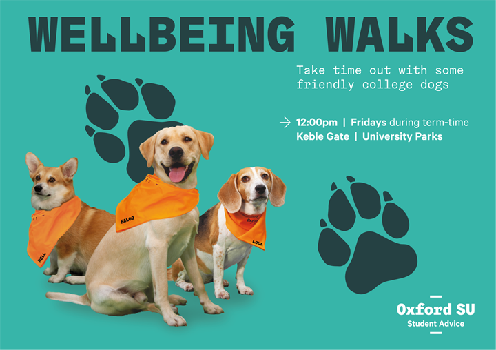Wellbeing Dog Walks